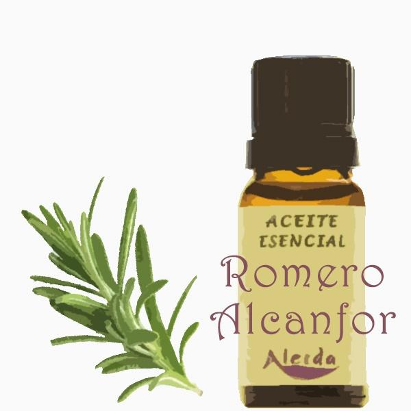 aceite esencial de romero quimiotipo alcanfor
