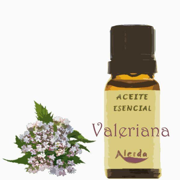 Aceite esencial de valeriana