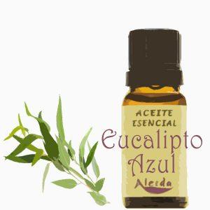 aceite esencial de eucalipto azul